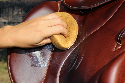 Balm leather care horse saddle