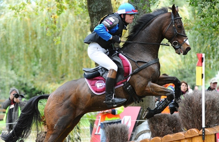 Horse sweating eventing cross-country