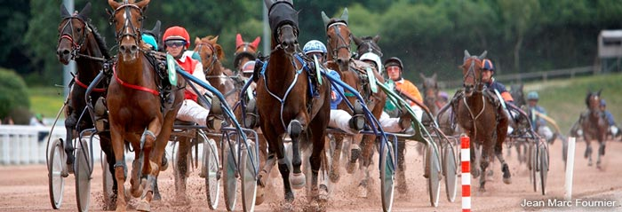 Horses harness racing Laval